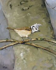 Original Oil painting of a crested tit wildlife bird art by UK artist j payne