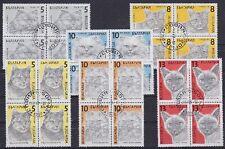 Katzen Bulgarien 4er Blocks Lot, rund gest. 1989, Fauna, Cats, used