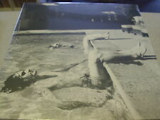"TIGER LOU - California Hauling EP - 12"" Vinyl // Neu&OVP"
