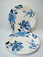 Rare Set Of 2  Pier 1 Imports Azure Floral Blue White  Dinner Plates  10 3/4""