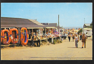 Vintage Norfolk Postcard: Beach Rd. Towards The Sea, Hemsby. West Norwich Lions