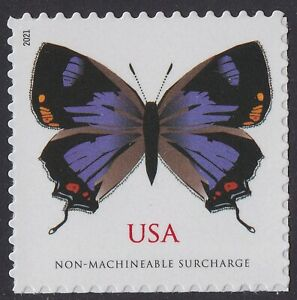 US 5568 Colorado Hairstreak Butterfly NMS single (1 stamp) MNH 2021