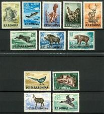 ROMANIA - 1956 - Animali (caccia e pesca)