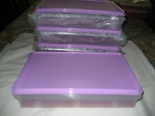TUPPERWARE LARGE COLD CUT KEEPER 9X13 PLUS (3) EGG TRAYS   MIP  FREE SHIP