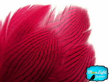 1 Dozen Claret Silver Pheasant Plumage Barred Feathers Fly Tying Jewelry Costume