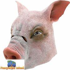 HALLOWEEN OVERHEAD PIG BOAR MASK Fancy Dress Costume Accessory
