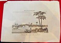 SÉNÉGAL : SAINT-LOUIS (côté couchant) vu de la MER - Gravure du 19e siècle