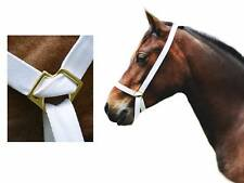 "1"" Web Adjustable Bright White Show Halter Welsh Pony Cob Foal M&M Mare Gelding"