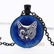 Kitten Cat necklace photo Glass Dome black Chain Pendant Necklace wholesale