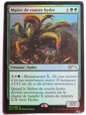 Maître de couvée hydre  Hydra Broodmaster Promo Foil    MTG Magic Francais EX
