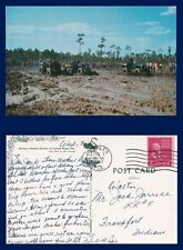 US FLORIDA NAPLES SWAMP BUGGY RACING POSTED FEBRUARY 7 1957 TO FRANKFORT INDIANA