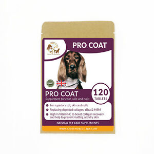 Professional Coat Conditioning Formula + Vitamin C Tablets for Dogs & Cats (120)