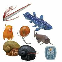 Kitan club. Deep-sea organisms Gashapon 8set mascot capsule Figures Complete set