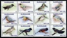 Suriname Birds on Stamps 2020 MNH Hummingbirds Kingfishers Motmot 12v Block