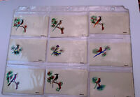 1930's Vintage REAL FEATHER HIGHLIGHTS LOT (13) ASSORTED BIRDS Note Cards ❤️