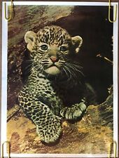 Original Vintage Poster Leopard cub baby cat wild animal 1980s safari pinup