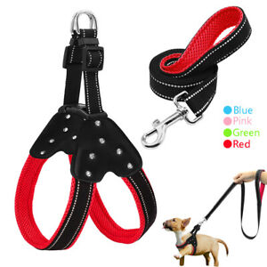 Padded Mesh Leather Dog Harness and Leash set Step in Reflective Walking Vest