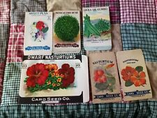 6 Vintage 1910 Card Seed Co. Flower & Vegetable Seed Packets Fredonia NY