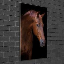 Wandbild Druck auf Plexiglas® Acryl Hochformat 50x100 Pferd Porträt