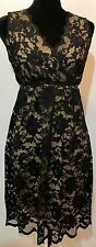 Max Studio Cocktail Sexy Lace Dress With Lining SZ S