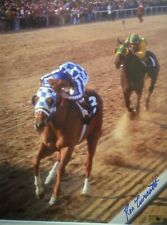 Secretariat photograph Preakness Stakes 11x14 Ron Turcotte autograph at the wire