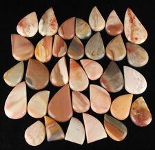 2777 Cts/33 Pcs Beautiful Natural Poligram Jasper Wholesale Lot Cabochon Stones