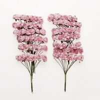 H376 Approx. 144pcs Mini Paper Rose Flower for Craft Wedding Favor