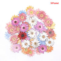 50pcs Flower Series Wood Buttons Sewing Scrapbooking  DIY Clothing Wooden DecSE