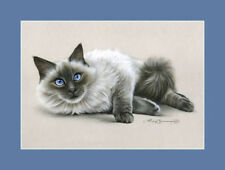 Realism Animals Original Art Prints