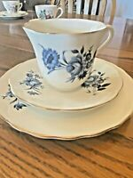 Elizabethan Taylor Kent Dessert Set Cup Saucer Plate, Made in England Vintage