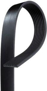 Serpentine Belt  ACDelco Professional  8K635