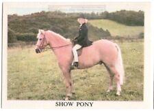Show Riding Pony Sport Riding British Equine Vintage Ad Trade Card