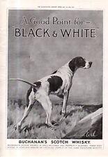1915 German short - hair Pointer Original Ad