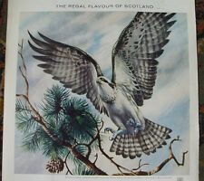 1960's Chivas Regal Whisky Advertisement Osprey Scotland