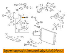 GM OEM Radiator-Lower Hose Clamp 11570383