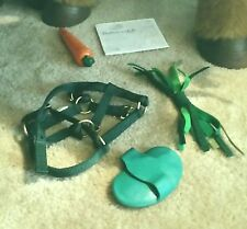 ACCESSORIES FURREAL GREEN HALTER, CARROT, BRUSH &MANUAL BUTTERSCOTCH SMORES PONY