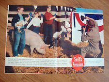 1960 Swift's Premium Ham Chicken Beef Cow  Ad   at the County Fair Blue Ribbons