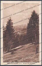 TRENTO LEVICO TERME 30 VETRIOLO BAGNI - BRENTONE Cartolina viaggiata 1927