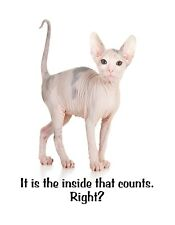 METAL MAGNET Sphynx Hairless Cat Is The Inside That Counts Right Cats Humor