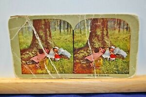 Antique Stereoview Card - #152 Tired Picnickers