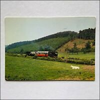 Stroll in the meadows of Blier Railway Train Postcard (P438)