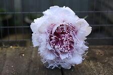 3 X Rosa Claro Vintage crinolina Velvet & Lace Rose 9cm con cable tallos Boda