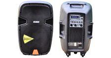 CASSA AMPLIFICATA 300WATT CON USB, INGR. MICROFONO PROFESSIONALE GBC