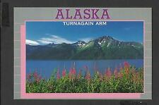 Colour Postcard  General View Turnagain Arm Alaska  unposted
