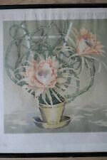 Viktor Pirkhoff (1875-1962)  Vintage Colour Woodcut. Cacti