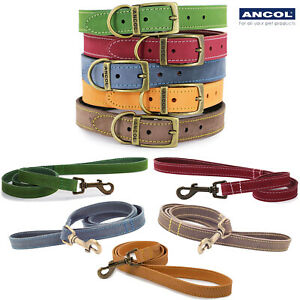Ancol Timberwolf Leather Collars or Leads Blue Sable Mustard Green Blue