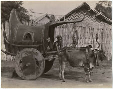 Photo Tirage Albuminé Birmanie Burma Vers 1880