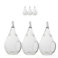 Vase Glass Hanging Teardrop Air Plant Terrarium Small Container Pot Set of 3 New