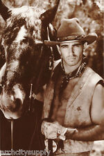 POSTER :RIDER - COWBOY & HORSE  -    FREE SHIPPING ! #341 RP91 R