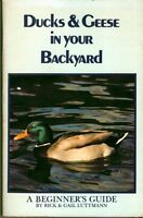 Ducks and Geese in Your Backyard: A Beginners Guide by Rick Luttmann